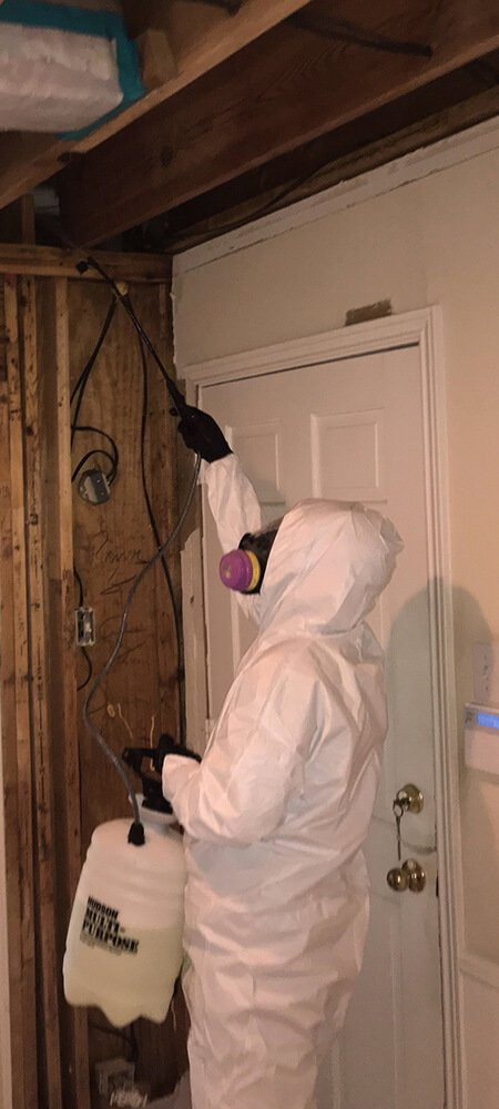 Mooring's licensed professionals are trained in full mold containment and remediation and will work safely and effectively to restore your property to pre-loss condition.