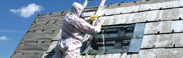 Asbestos Removal Image